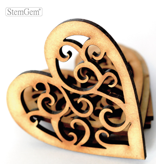 StemGem Heart wooden shape