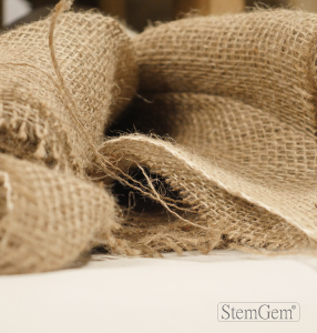 StemGem Hessian Wrapping