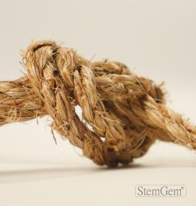 StemGem Manila Rope