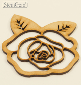 Rose Wooden Shapes from StemGem Vases