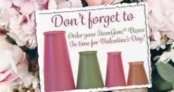 StemGem® Vases For Valentine's Day